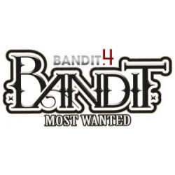 Kit de 3 boudins pour lattes de BANDIT 4 - 2011